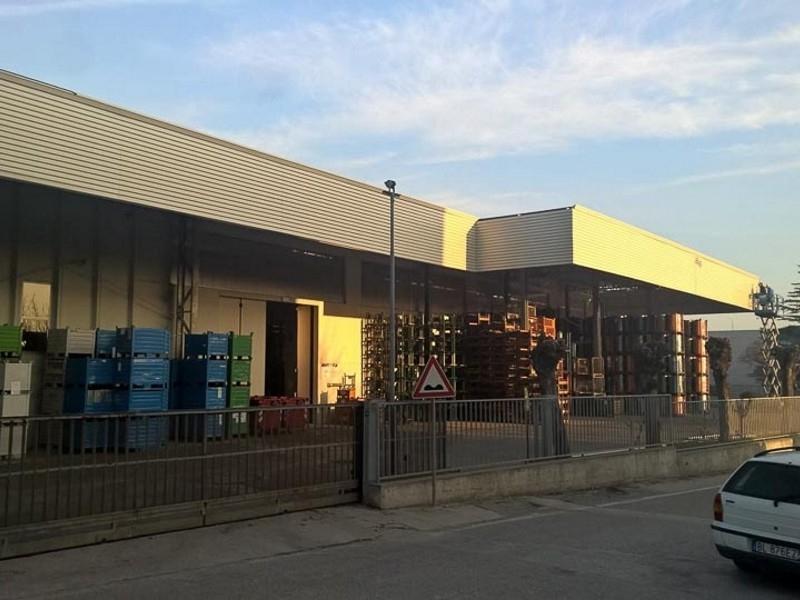 tettoia industriale da esterno 1